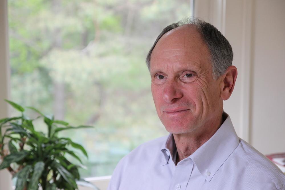 Joseph Goldstein Mindfulness