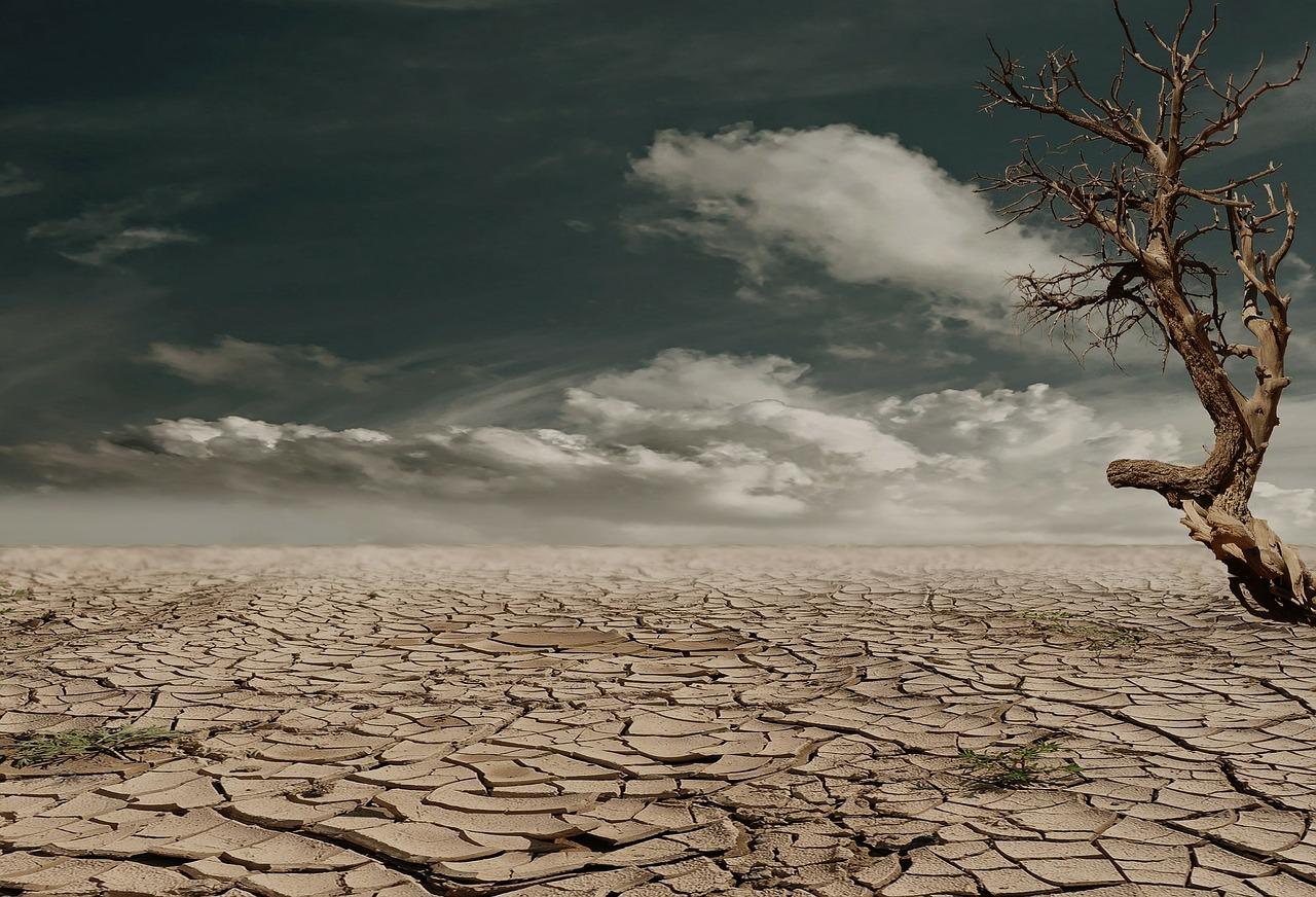 Cambiamenti climatici. Non si fa abbastanza per la Terra
